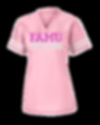 FAMU Football Jersey (Pink).png