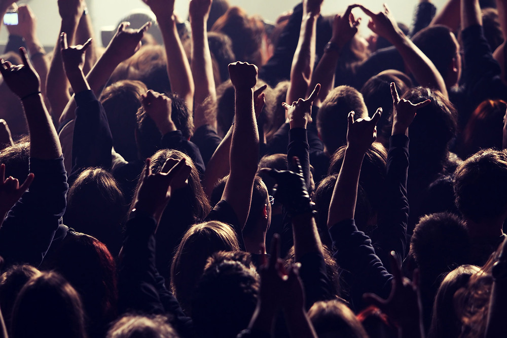 Concert crowd Business Consulting Healthcare Consulting Alternative Medicine Consulting Salsbury & Co.