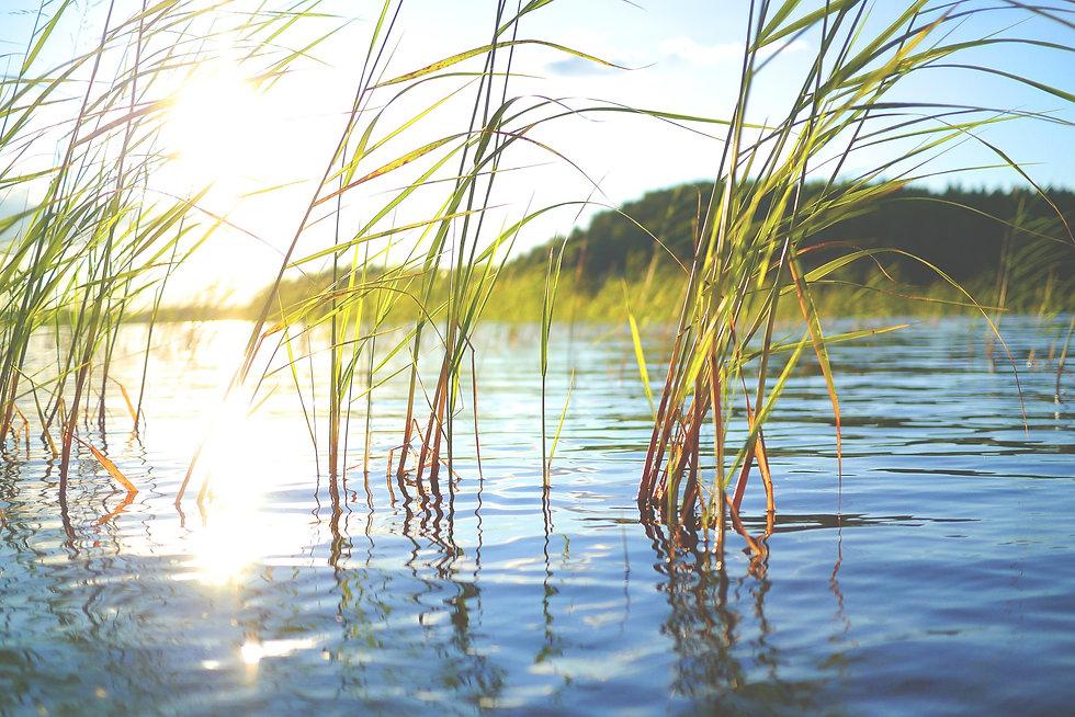 lake-896191_1920.jpg