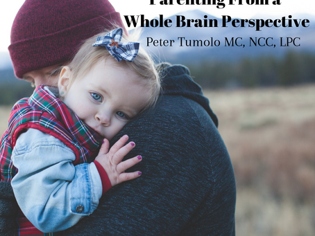 Parenting From a Whole Brain Perspective