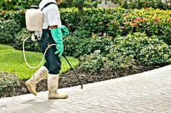 Jardinier avec désherbant