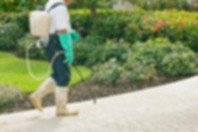 Pest control service treatment