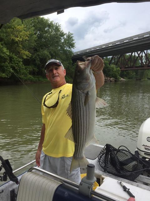 fishing the lower Illinois River