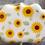 Thumbnail: Sunflower stencil
