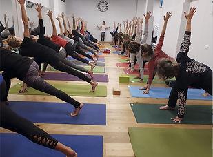 anusara-yoga-inmersion.jpg