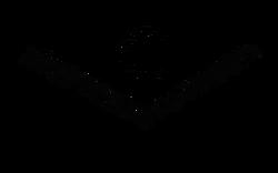 S19_Black-Main Logo.webp