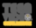 teenvideochallenge_color-300x236.png