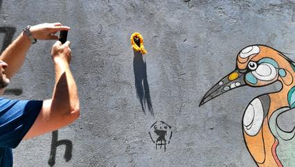 סיור אמנות רחוב וסדנת צילום