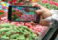 סדנה עם סיור טעימות בשוק