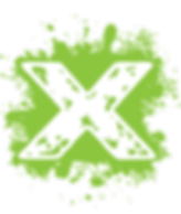 X logo_green.png