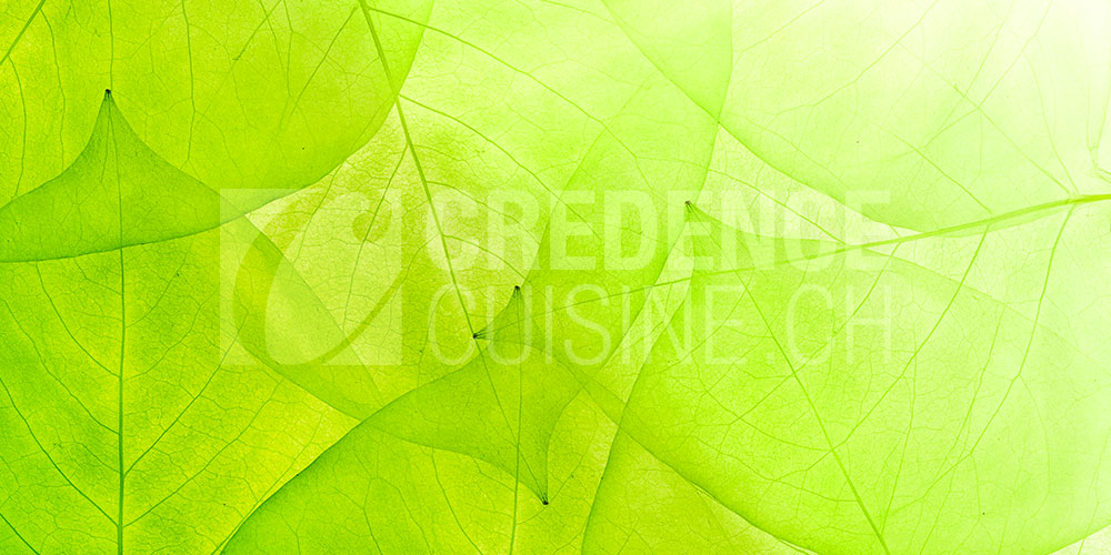 Credence_cuisine_feuillage_vert