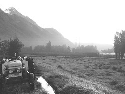 abricot_valais_Bernard_Lucciarini_tracteur