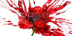 Credence_cuisine_coquelicot