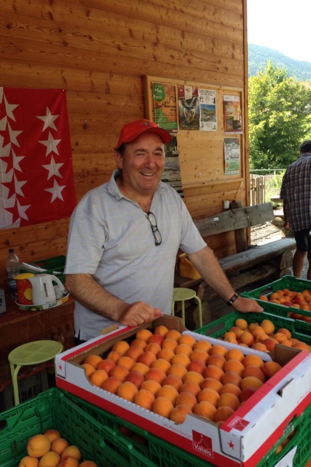 Abricot_Valais_Cavagne