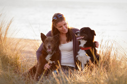 pets and owner on beach at sunset