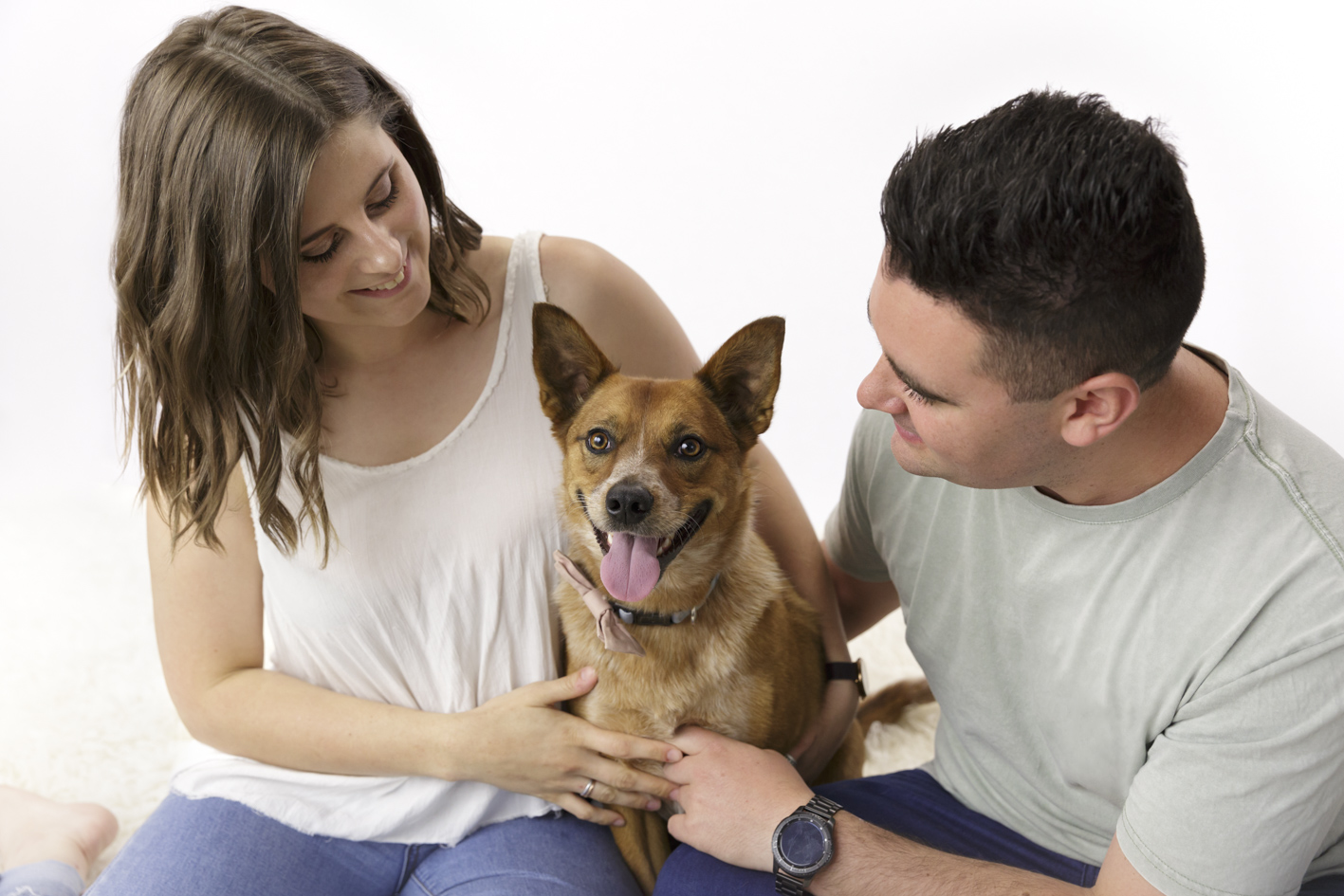 pet photo shoot including owners