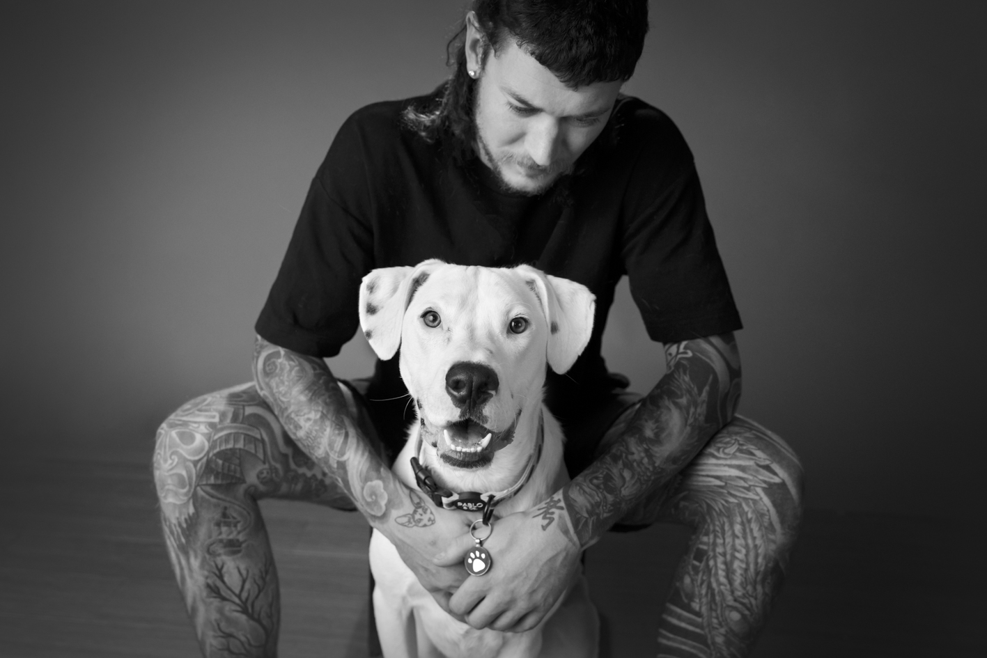 Dog Photographer Melbourne