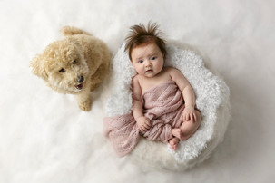 baby photographs including dog