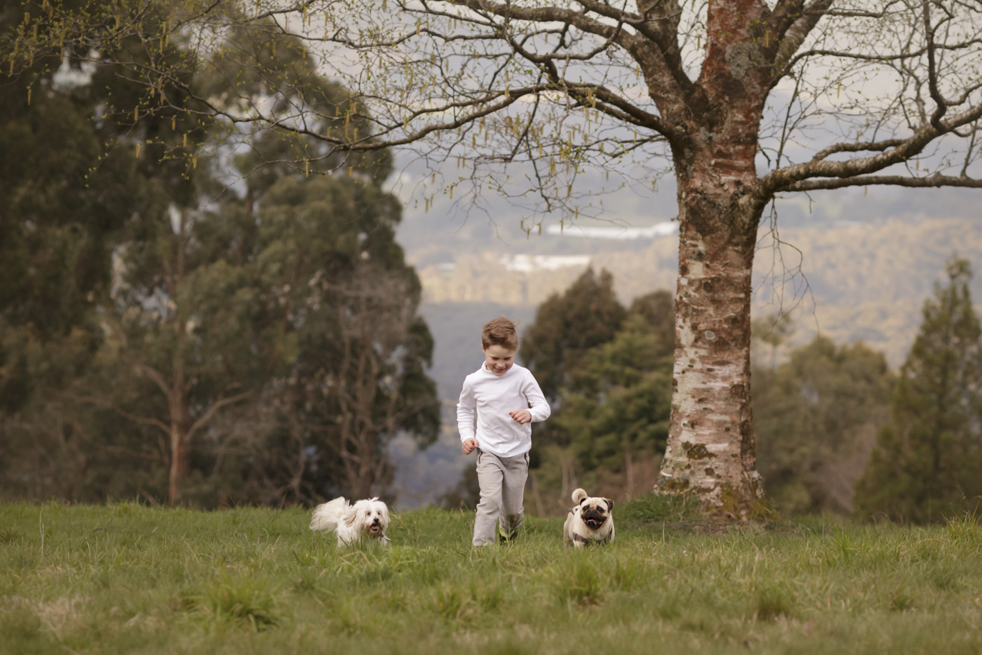 boy running with his dogs