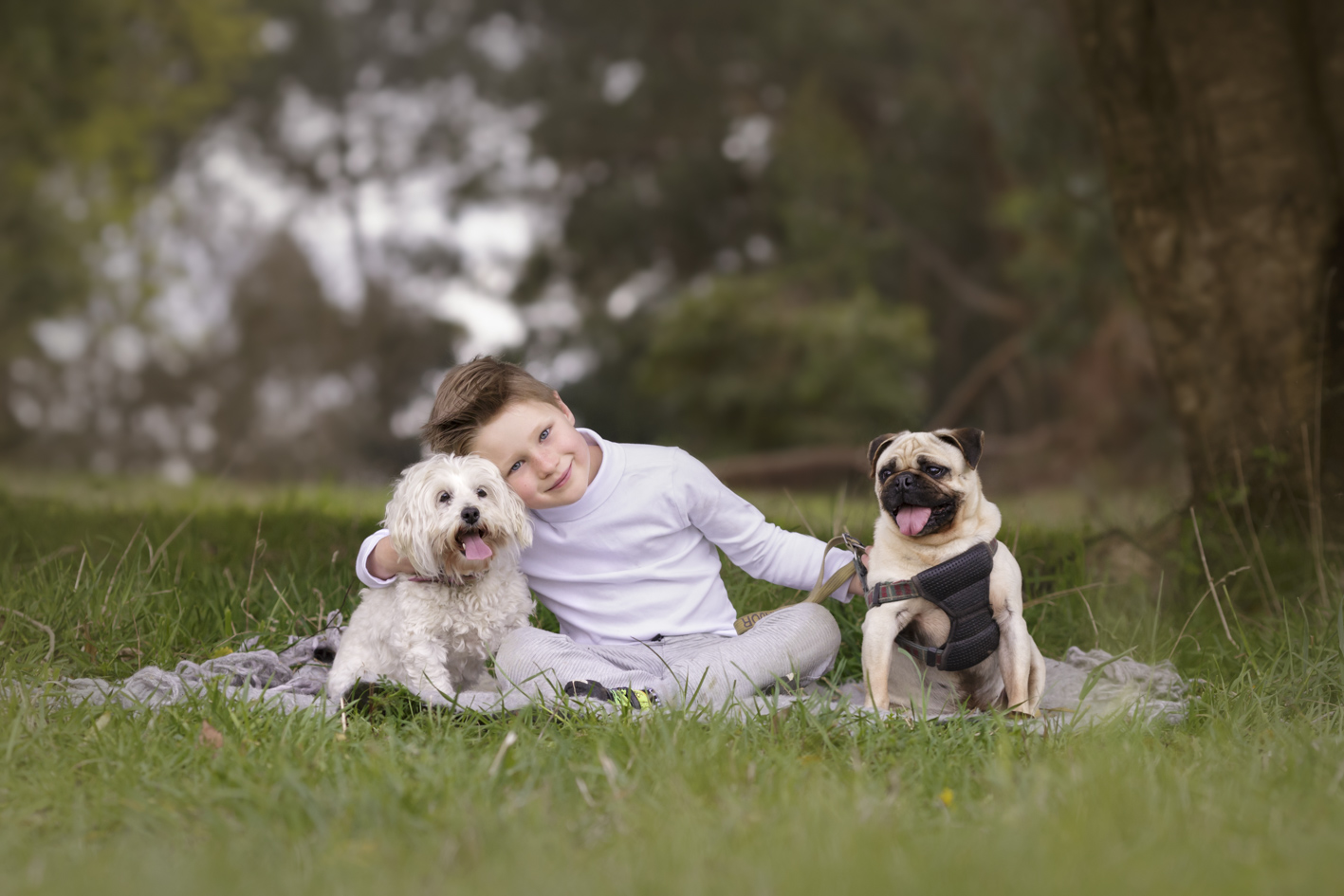 outdoor portrait boy with dogs
