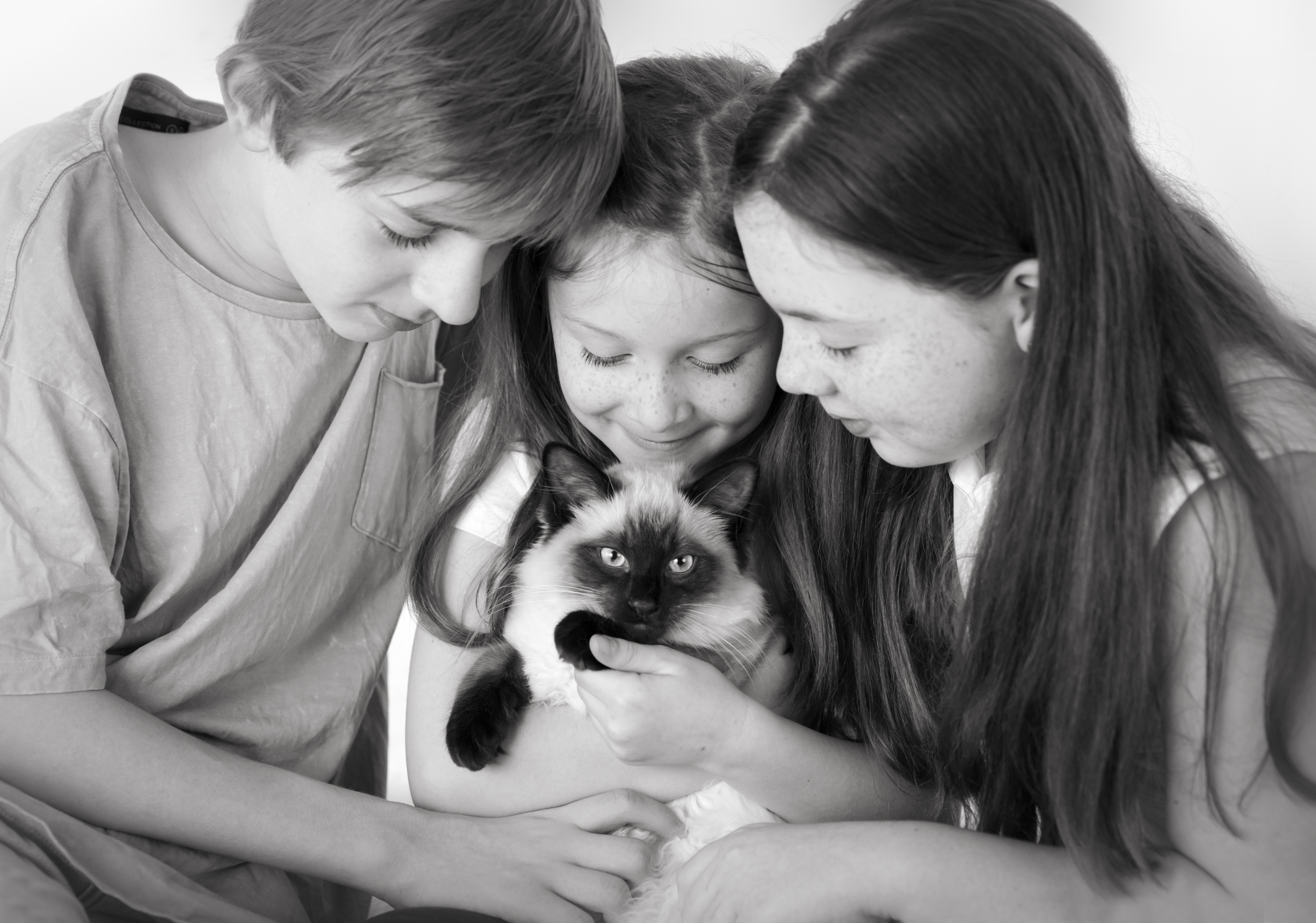 kids with their cat