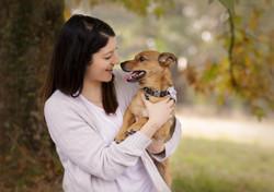 autumn dog portraits