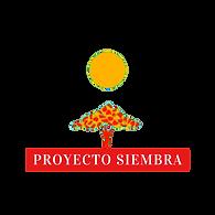 high quality transparent PY logo.png