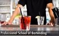 Professional School of Bartending.jpg
