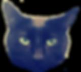 Sol, kitty, cat, paper moon, mcgregor