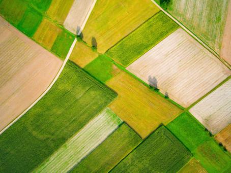 Вижте новите възможности на Земеделският софтуер TechnoFarm