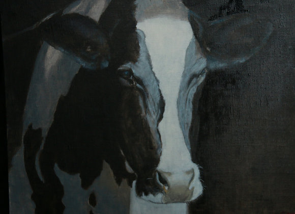 Oil on canvas - Friesian Cow