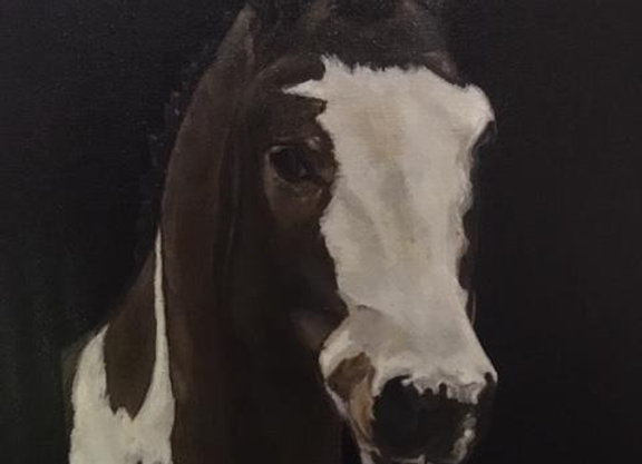 Oil on Canvas - Terry