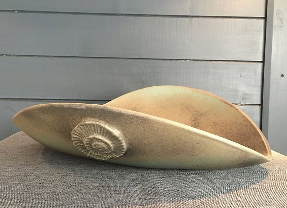 Large Ammonite Curved Bowl