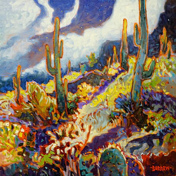 """""""Apache Trail"""""""
