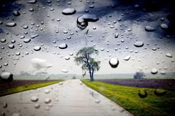 Windshield Rain Repellent