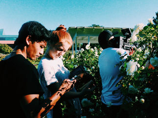 Baum Music Video