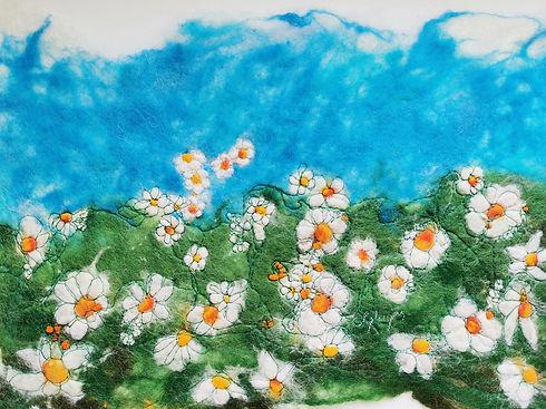 daisy daisy.jpg