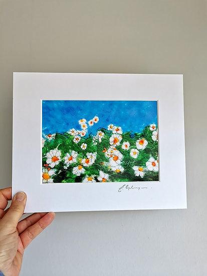 Daisy Daisy Mounted Print