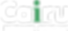 logo_CAIRU.png