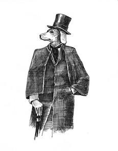 Ritratto di elegante Bracco