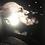 Thumbnail: Coriolanus   DVD or Video