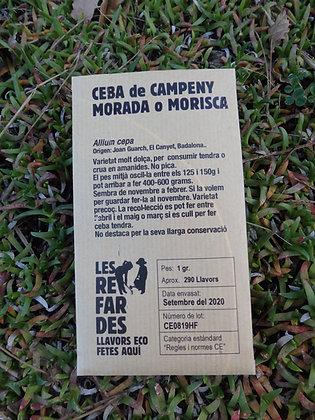 CEBOLLA de CAMPENY MORADA o MORISCA