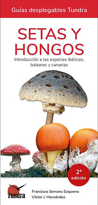 Guías desplegables: Setas y hongos