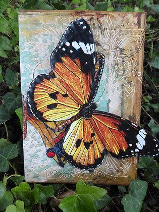 Postal de mariposas 3