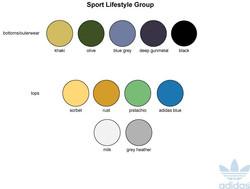 sport lifestyle colors