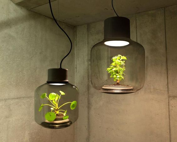 lamp pot