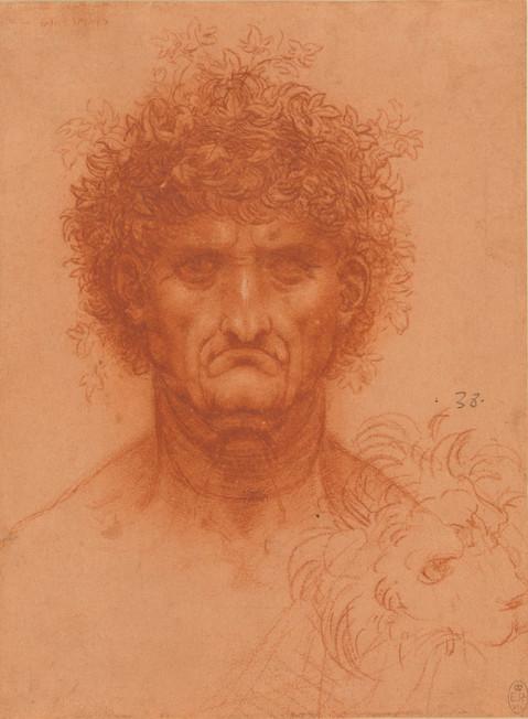 De onnavolgbare Da Vinci