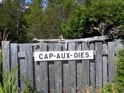 Cap-aux-oies et sa plage