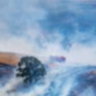 east-gippsland-bushfires-1-2019.jpg