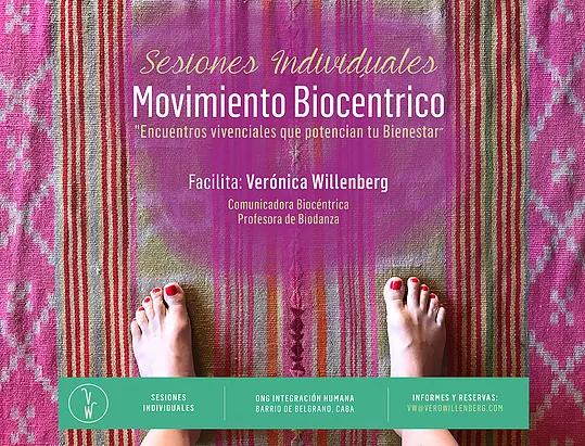 Sesiones Individuales de Movimiento Integrador